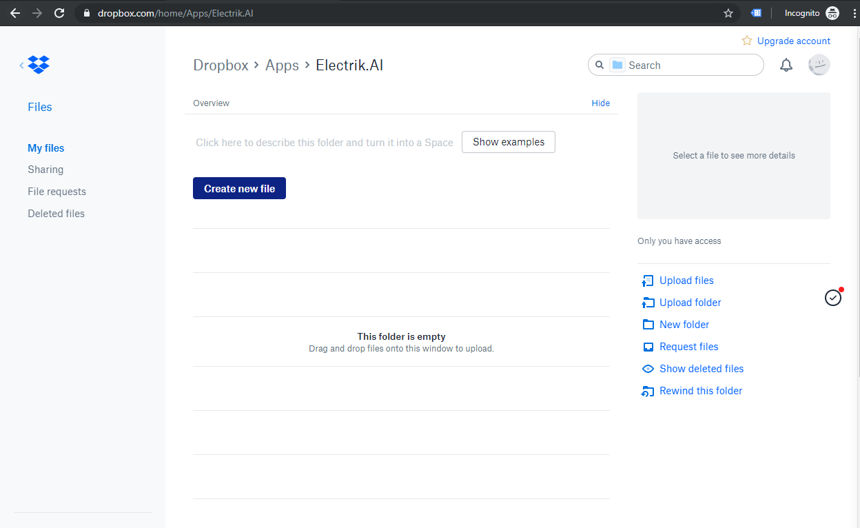 Dropbox Account-Electrik.AI