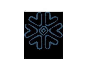 Snowfalke-ElectrikAI