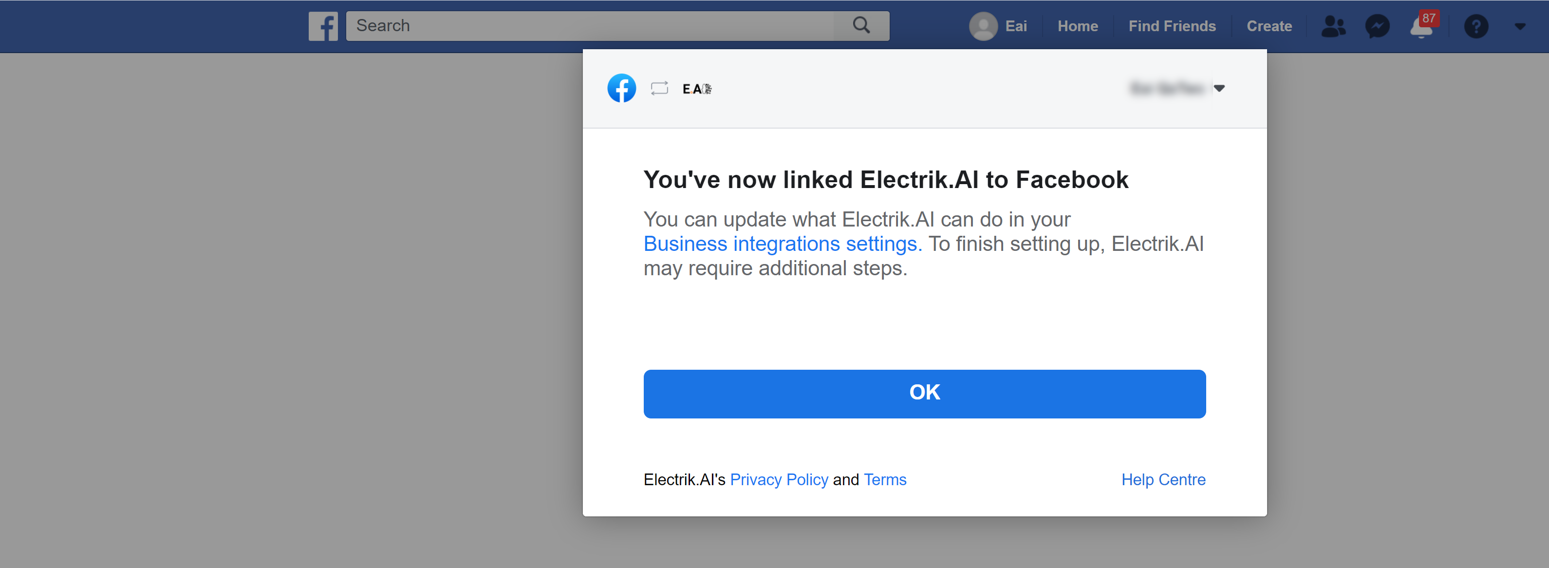 Allow Electrik.AI to access your selected Facebook Page (2)