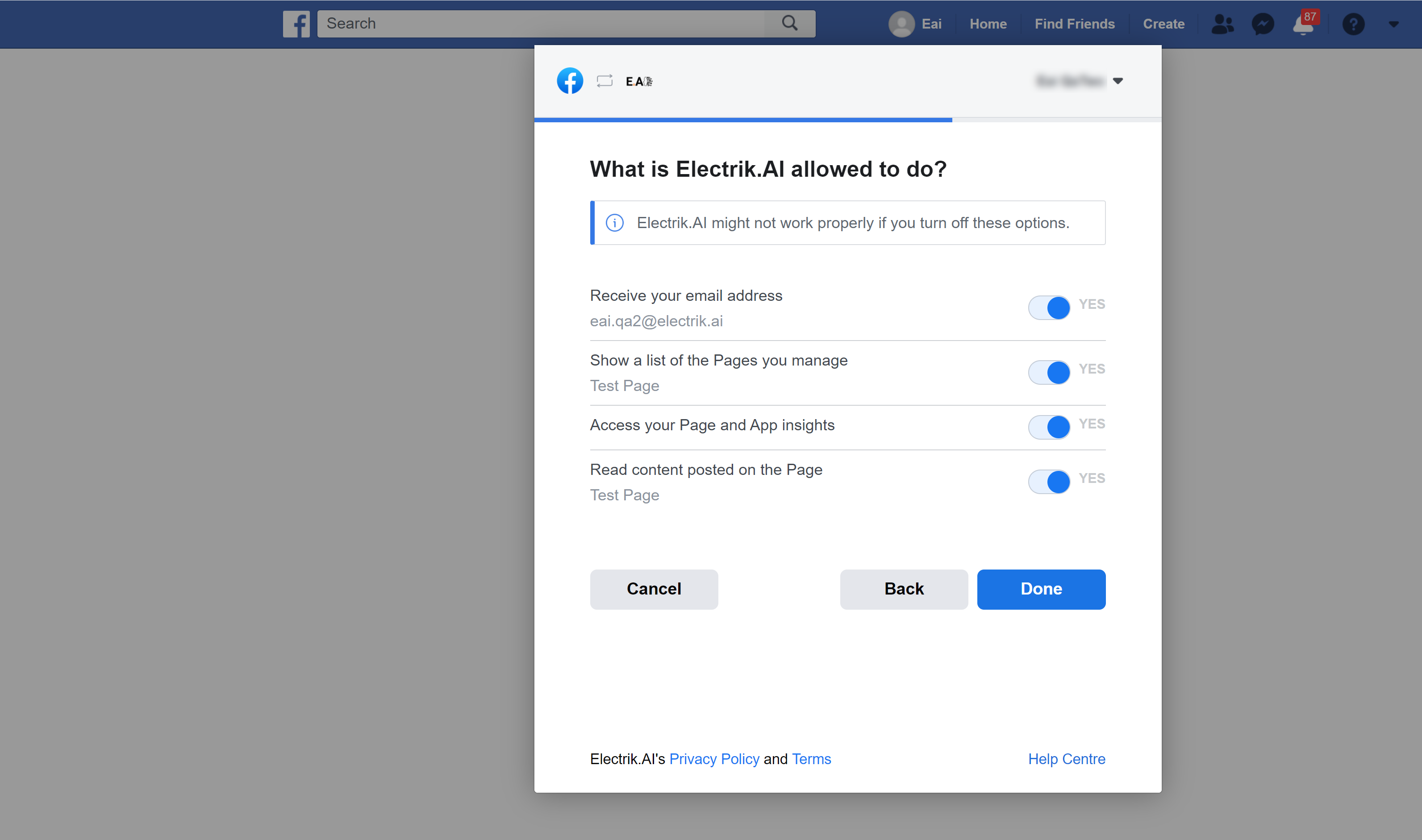 Allow Electrik.AI to access your selected Facebook Page
